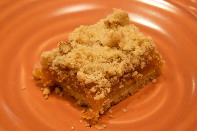 Apricot Bar with extra apricots