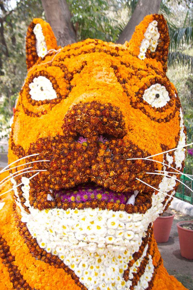 Flower Tiger