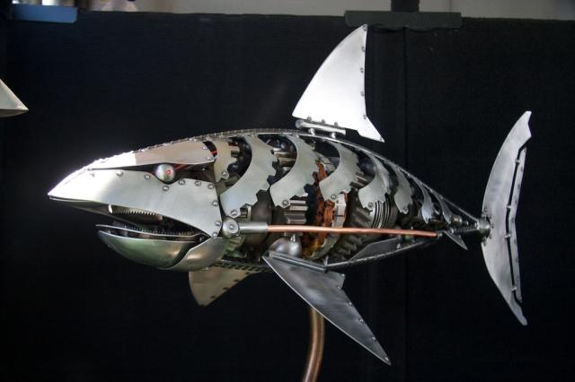 LED Shark