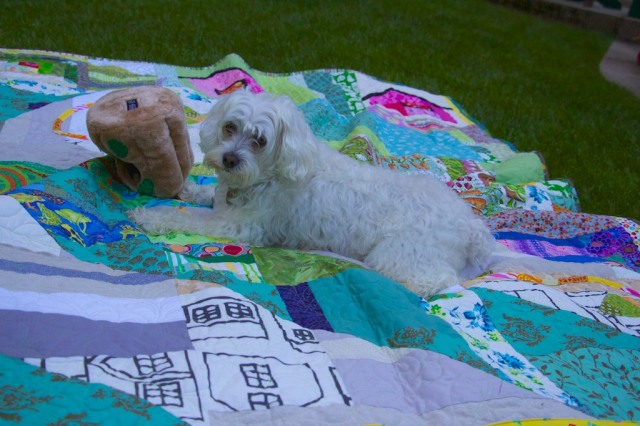 Schnap Mini Totoro Quilt  184