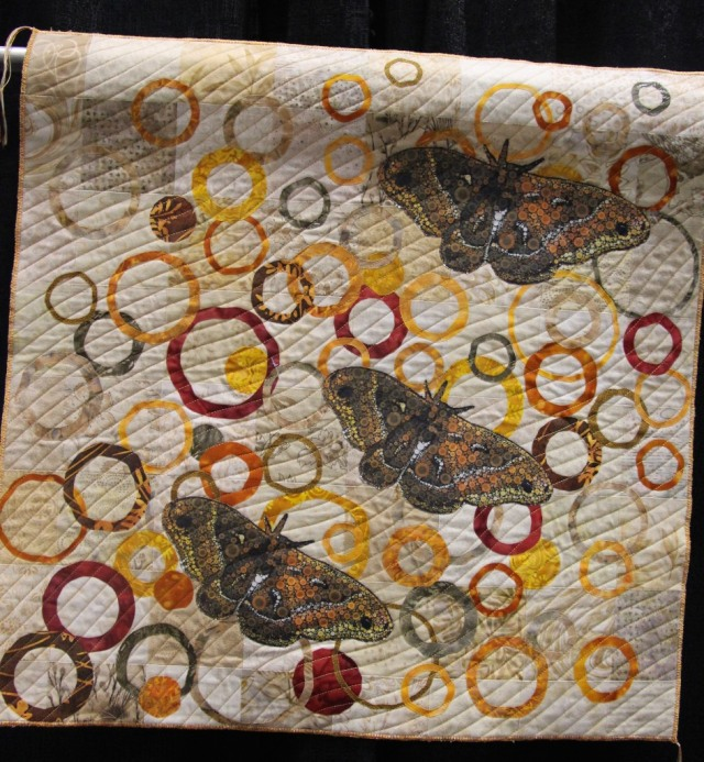 Kathy Shaker - Ringed Moth